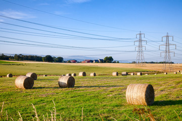 Summer rural landscape with silage bales on a field in Scotland UK Wall mural