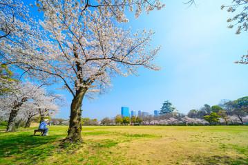 大阪城を眺める老夫婦