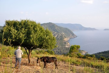 A donkey with its master in Greece in Alonissos island