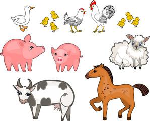 Set of different cartoon farm animals on white background