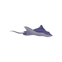 Stingray fish vector Illustration on a white background