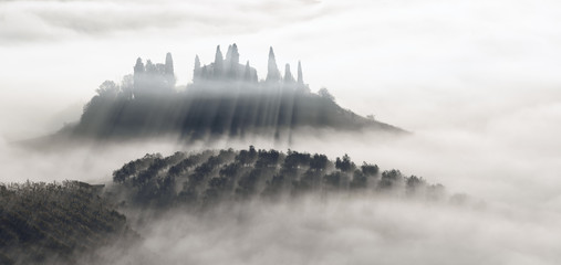 Beautiful foggy sunrise in Tuscany, Italy with vineyard and trees. Natural misty background in black and white Fototapete