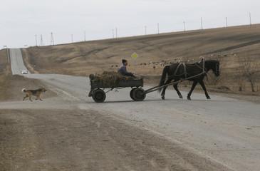 A man rides a horse cart in the Siberian village of Tyulkovo