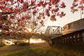 Glienicker Brücke im Sonnenaufgang