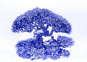 Bonsai with sprawling branches.