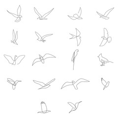 One line birds set. Vector illustration