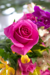 Close-up image of a bouquet of roses pink , violet, yellow