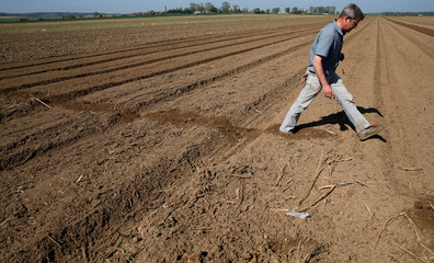 Lucas Laude, a farmer draws a line in his field as he plants potatoes in Sailly-Lez-Cambrai
