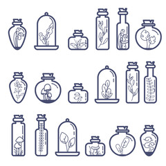 Set of different terrarium bottles with grass and mushrooms. Flat outline vector illustration