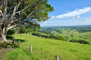 Byron Shire landscape in the sumer. In Australia.