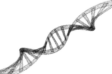 DNA, black helix model in healthcare and medicine and technology concept on white background, 3d illustration