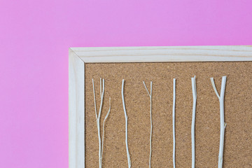 Isolate of wooden pin frame on pink background on bottom right with white dry branch