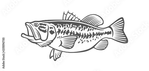 """""""bass fish"""" Stock image and royalty-free vector files on ..."""