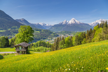 Idyllic mountain scenery with traditional mountain chalet in the Alps in summer