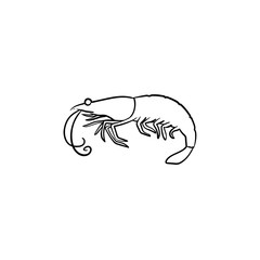 Shrimp hand drawn outline doodle icon. Vector sketch illustration of healthy seafood - shrimp or prawn for print, web, mobile and infographics isolated on white background.