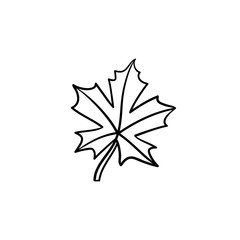 Maple leaf hand drawn vector outline doodle icon. Vector sketch illustration of maple leaf for print, web, mobile and infographics isolated on white background.