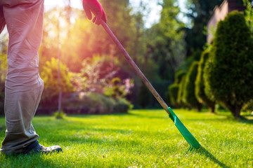 The man is grabbing the grass against the setting sun in the garden. Works In Garden and Planting Seedlings. A Man Cuts the Branches of Bushes and Trees, makes Seedlings.