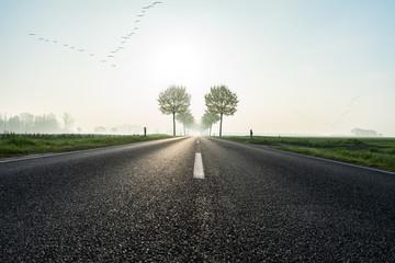 Straße führt durch idyllische Morgenlandschafft