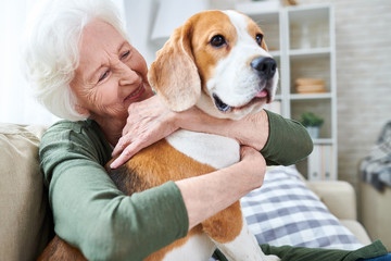 Cheerful retired senior woman with wrinkles smiling while embracing her Beagle dog and enjoying time with pet at home Wall mural