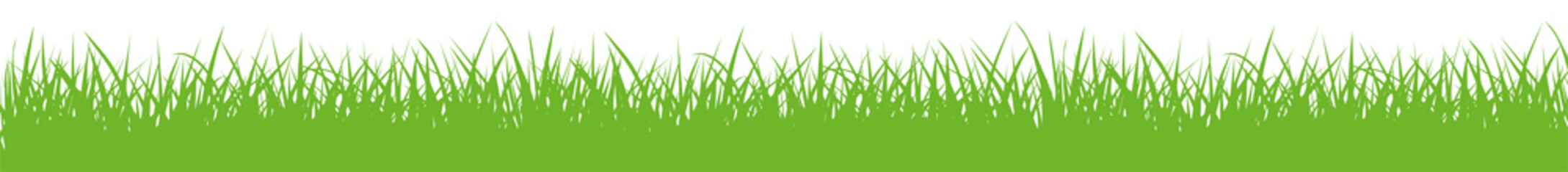 Vector green gras silhouette - stock vector.