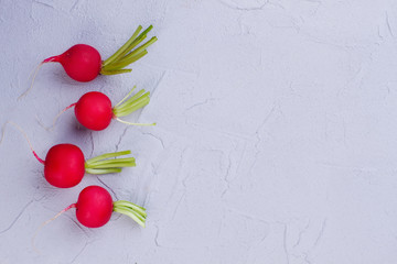 Small red radishes, copy space. Young fresh radishes on textured background, copy space. Delicious salad ingredient.