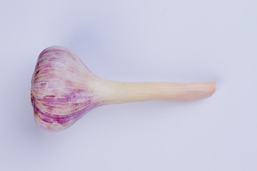 Young purple garlic with stem. Fresh organic vegetable on textured background. Food, spices, cuisine.