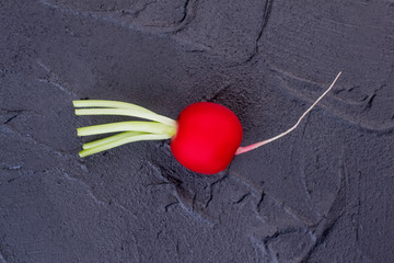 Red radish on black textured background. Salad radish with green bunch tail close up.