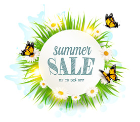 Wall Mural - Summer sale background with grass, daisies and butterflies. Vector.