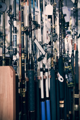 Picture of fine fishing rods for fishing