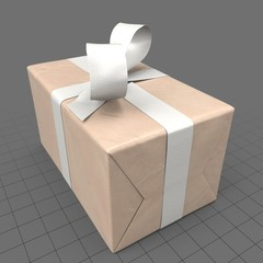 Wrapped present with white bow