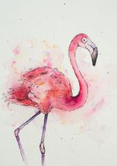 Pink Flamingo Watercolor
