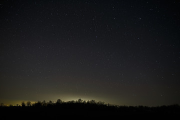 Bright stars in the night sky in a forest. Landscape with a long exposure.