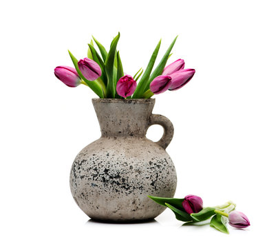 Lilac tulips in concrete vase isolated on white background