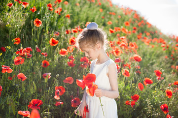 pretty little girl in white dress collects orange poppies on blossom hill in summer