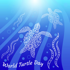 World Turtle Day. Water turtles swim up