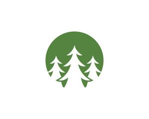 Cedar tree Logo template vector