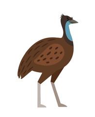 Emu cartoon bird icon