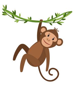 Funny cartoon monkey icon