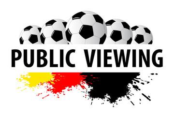 Fussball - Soccer - 254