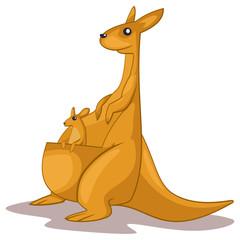 Kangaroo animal cartoon vector illustration isolated on white background.