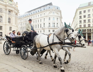 Photo sur Plexiglas Vienne Vienna, Austria - 15 April 2018: a cab driver in a carriage with two horses drives tourists around the city.