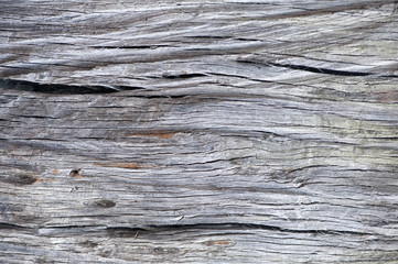Patterns showing the structure of wooden boards