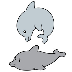 vector set of dolphin