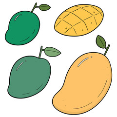 vector set of mango