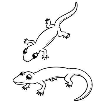 vector set of lizards