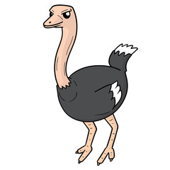 vector of ostrich
