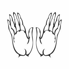 Opened palms of man. Hands. Design concept. Vector illustration