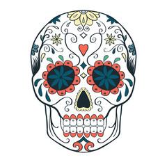sugar skull, vector illustration