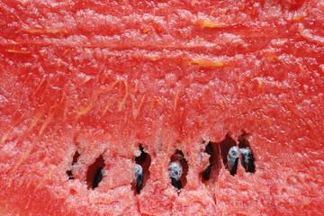 texture fresh red watermelon background