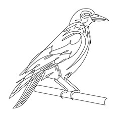 Foto op Plexiglas One Line Art Crow Continuous Line Vector Illustration